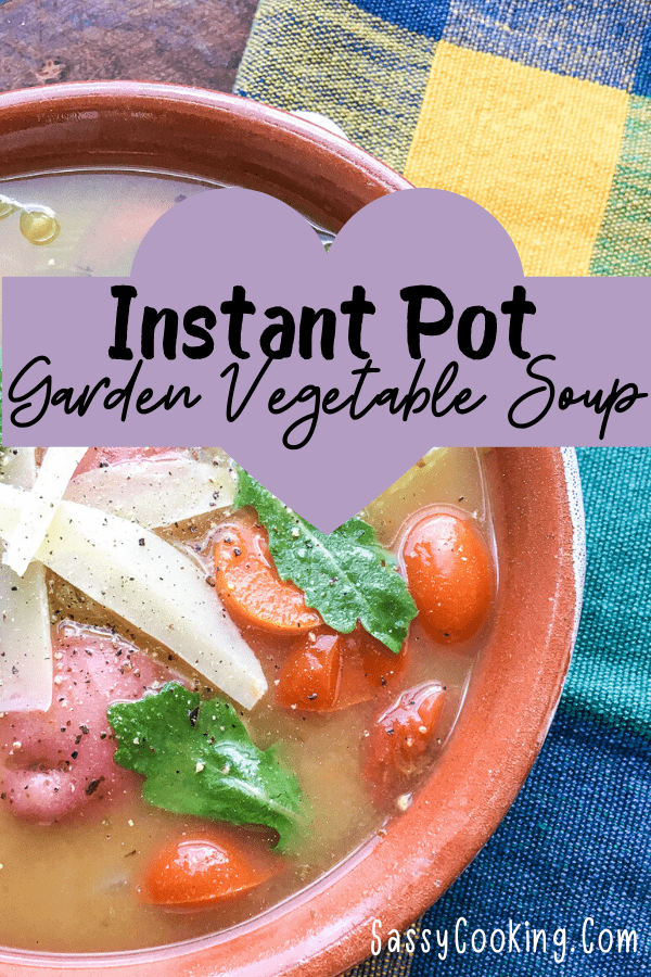 Instant Pot Garden Vegetable Soup